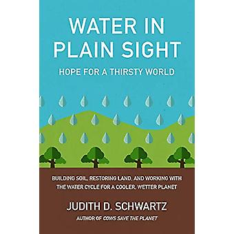 Water in Plain Sight - Hope for a Thirsty World by Judith Schwartz - 9