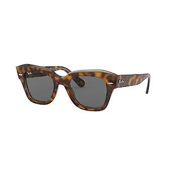 Ray-Ban State Street RB2186 1292/B1 Havana On Trasparent Light Brown/Dark Grey Sunglasses