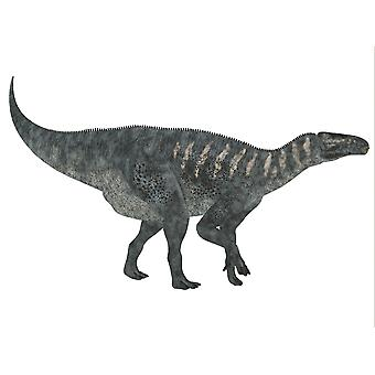 イグアノドン恐竜イグアノドンだった白亜紀の期間ポスター印刷中にヨーロッパに住んでいた草食恐竜