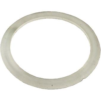 Waterway 711-4200 Crystal Water Beveled Gasket