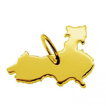 Anhänger Landkarte Kettenanhänger in gold gelb-gold in der Form von CHINA