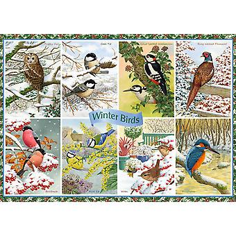 Falcon Deluxe Winter Birds Jigsaw Puzzle (1000 Pieces)