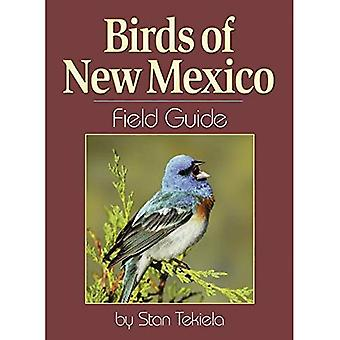 Fåglar i New Mexico Field Guide