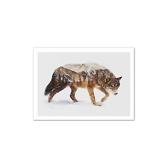 Kunst-Poster - Wolf - Andreas Lie 50 x 70 cm