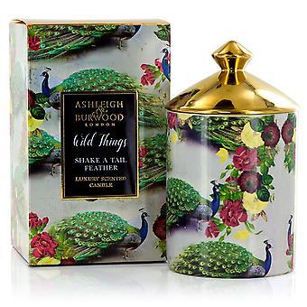 Ashleigh & Burwood Luxus duftende Geschenk Boxed Kerze Schütteln ein Schwanz Feder - Mimosa