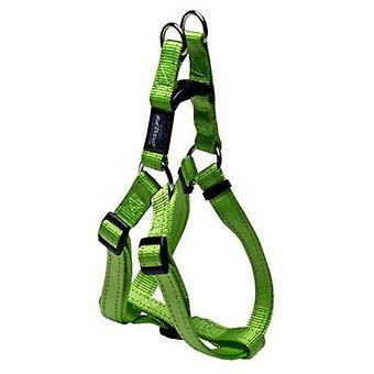 Rogz  Nitelife  Harness Special 5 (Dogs , Collars, Leads and Harnesses , Harnesses)