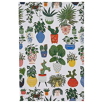 Kitchen Tea Towel Quality Soft Absorbent 100% Cotton by Ulster Weavers - Various