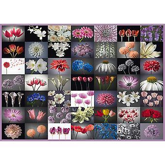 Schmidt Flower Collage Jigsaw Puzzle (2000 Pieces)