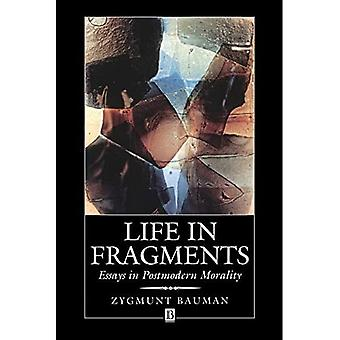 Life in Fragments: Essays in Postmodern Morality: Essays in Postmodern Moralities