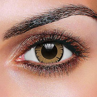 Big Eye Pretty Hazel Contact Lenses (Pair)