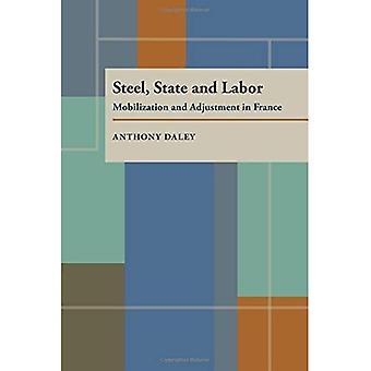 Aço, estado e trabalho: mobilização e ajuste em França (série Pitt em política e estudos institucionais)