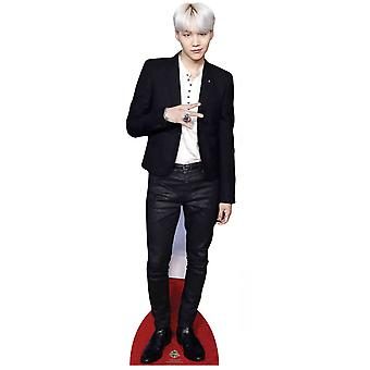 Suga from BTS Bangtan Boys Mini Cardboard Cutout / Standee / Standup