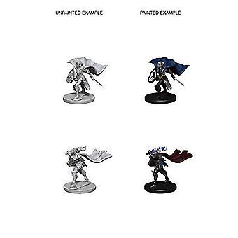 Pathfinder Deep Cuts Unpainted Miniatures Elf Female Paladin (Pack of 6)