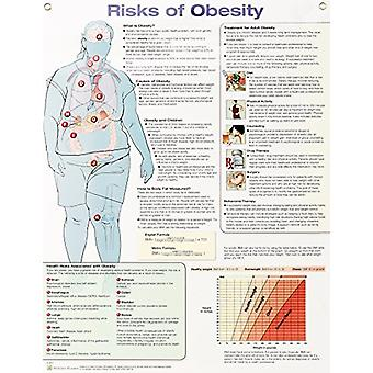 Risks of Obesity Anatomical Chart Laminated by Anatomical Chart Compa