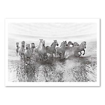 Art-Poster - Illusione di potere (13 cavalli di potenza però) - Golubenko romano 50 x 70 cm