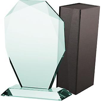 Trofeo de cristal con maleta
