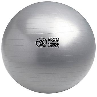 Fitness Mad 125kg Anti-Burst Swiss Fit Ball 65cm Workout Physio Pilates Yoga