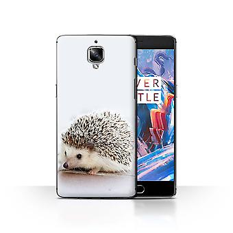 STUFF4 Case/Cover for OnePlus 3/3T/Tiny Hedgehog Hoglet/Cute Baby Animal Photos