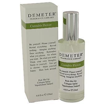 Demeter Cannabis Flower Cologne Spray de Demeter 4 oz Cologne Spray
