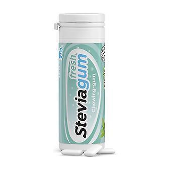 Steviagum Fresh Mint Gum 15 units