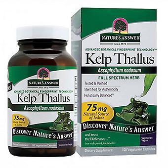 Luonto's Answer Kelp Thallus, 100 korkkia