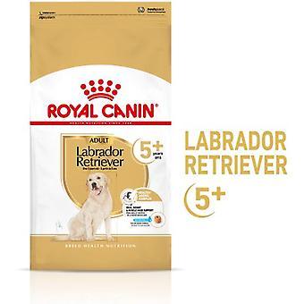 Royal Canin Labrador Retriever Voksen 5+ (Hunder , Hundemat , Tørr mat)