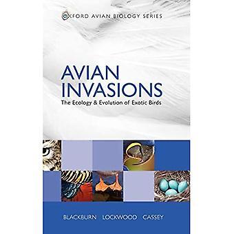 Fågelinvasioner: Ekologin och evolutionen av exotiska fåglar (Oxford Avian Biology)