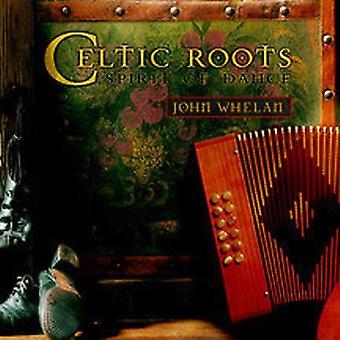 John Whelan - Celtic Roots [CD] USA import