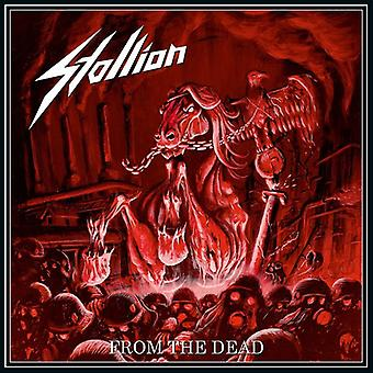 Stallion - From the Dead [CD] USA import