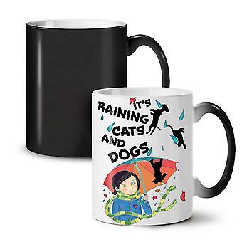 Raining Cats Dogs NEW Black Colour Changing Tea Coffee Ceramic Mug 11 oz | Wellcoda