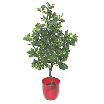 102cm Geranie Aralia (Polyscias Guilfoylei) Kunstpflanze Baum