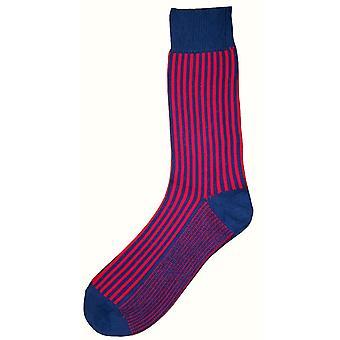 Bassin and Brown Vertical Stripe Midcalf Socks - Mid Blue/Deep Pink
