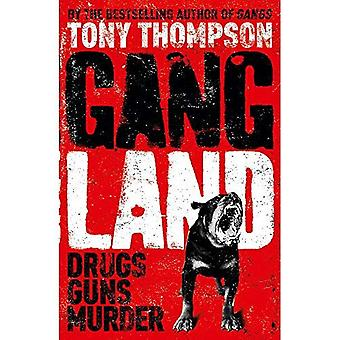 Gang Land: From Footsoldiers to Kingpins, the Search for Mr. Big