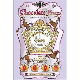 Harry Potter, Maxi Poster - Schokolade Frösche