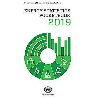 Energy statistics pocketbook 2019 by United Nations - Department of Ec