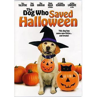 L'importazione di cane che salvato Halloween [DVD] Stati Uniti d'America