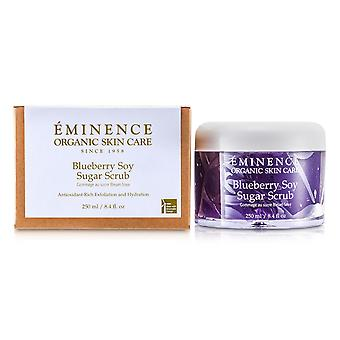 Blueberry sojasuiker scrub 140315 250ml/8.4oz