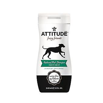 Attitude Natural Pet Shampoo, Skinnende Coat 8 fl oz