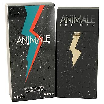Animale Eau De Toilette Spray par Animale 6.7 oz Eau De Toilette Spray
