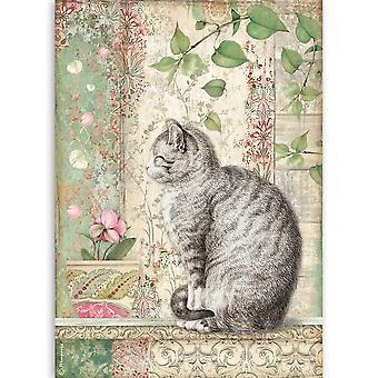 Stamperia Riisi paperi A4 Kissa