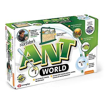Monde de fourmi