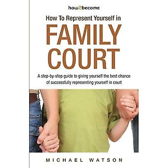 How To Represent Yourself in Family Court - A step-by-step guide: 1 (How2Become)