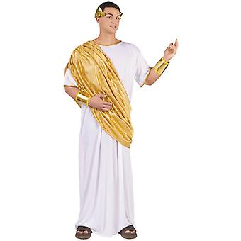 Hail Caesar Julius Toga Roman Greek Men Costume One Size