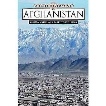 Een korte geschiedenis van Afghanistan door Shaista Wahab