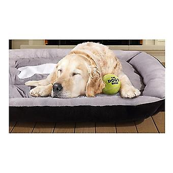 Pawz Heavy Duty Pet Bed Mattress In Size Large