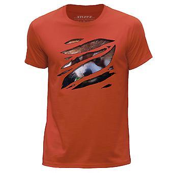 STUFF4 Men's Round Neck T-Shirt/Large Rip/Racoon/Zoo Animal/Orange