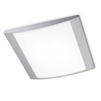 2 licht plafond licht grijs