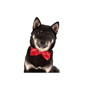 Show Tech Adjustable Fun Canine Costume Dickie Bows - Assorted 10 Pack