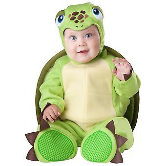 Tiny Turtle Reptiles Sea Ocean Animal Baby Boys Infant Costume