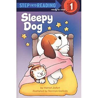 Cane sonnolento (passaggio in lettura: un passo 1 libro)